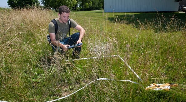 UC student Jake Godfrey squats in a field of grass at the UC Center for Field Studies uses an iPad to conduct a vegetation survey and record data.