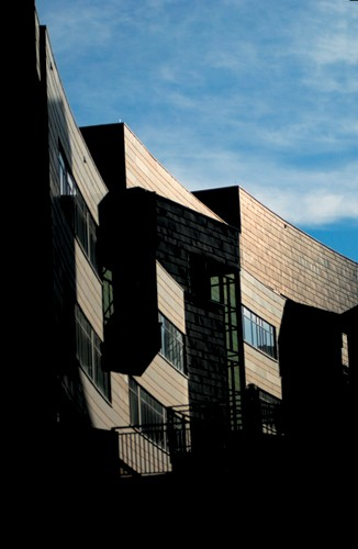 The long and narrow Steger Student Life Center steps down the heart of MainStreet. The building opened in 2004, around the same time the Boston Globe called UC out as a 'must stop on any mid-American architecture tour.'
