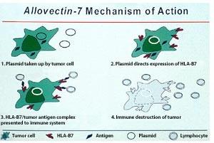 Allovectin-7