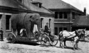 Elephant on campus, 1902